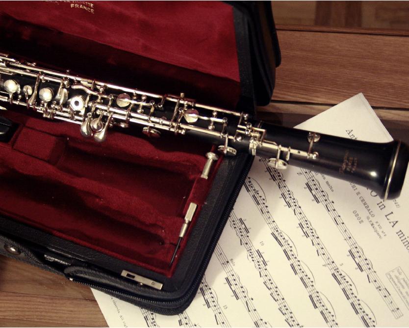 Oboes by Javi Sanchez de la Vina