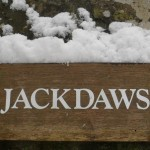 Snowy Jackdaws Sign